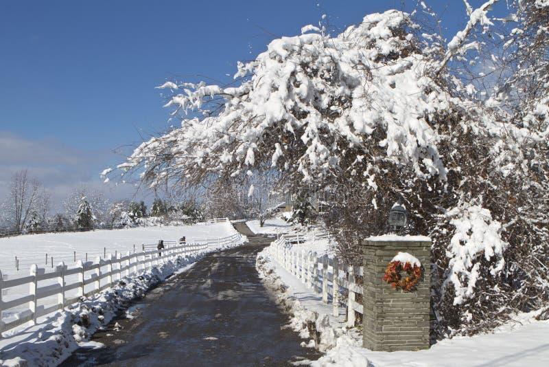 La primera nieve imágenes de archivo libres de regalías