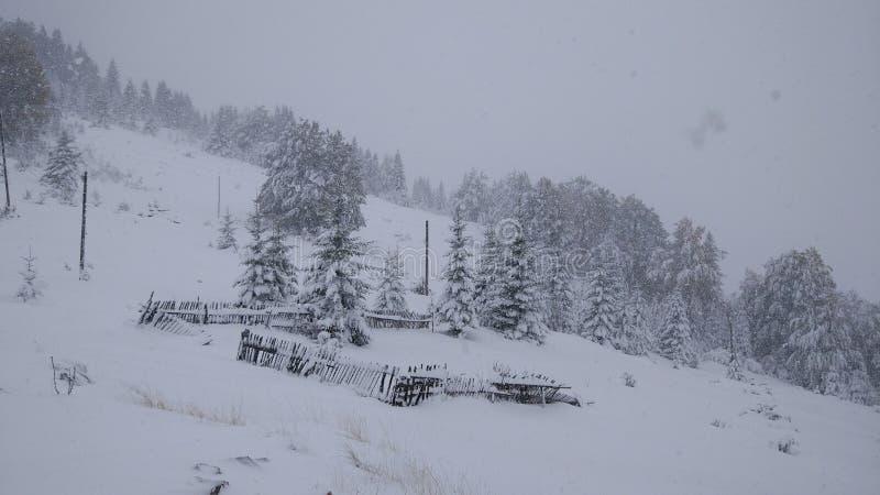 La primera nieve en las montañas hizo mucho daño foto de archivo