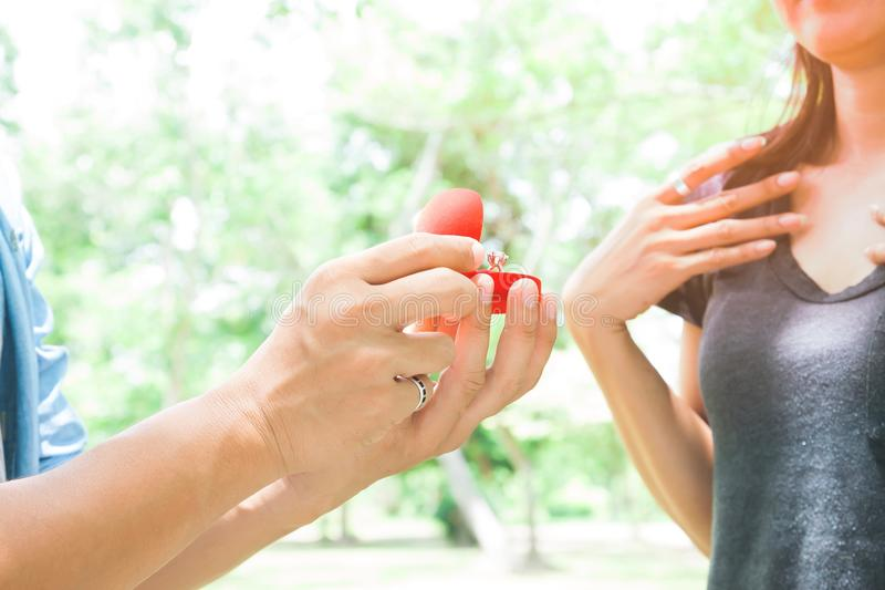 La propuesta de matrimonio, hombre da el anillo de compromiso a su novia fotos de archivo