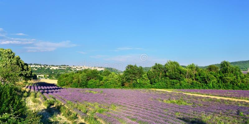 Download La Provenza, Francia fotografia stock. Immagine di paesaggio - 56892238