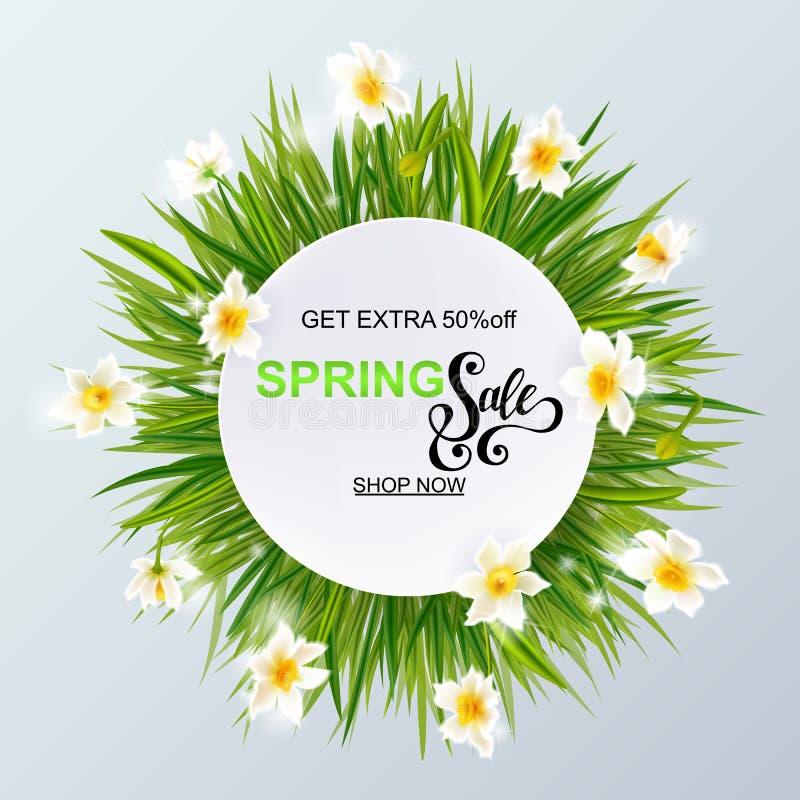 La pubblicità circa la vendita della molla su fondo con il narciso del narciso e dell'erba fiorisce illustrazione vettoriale