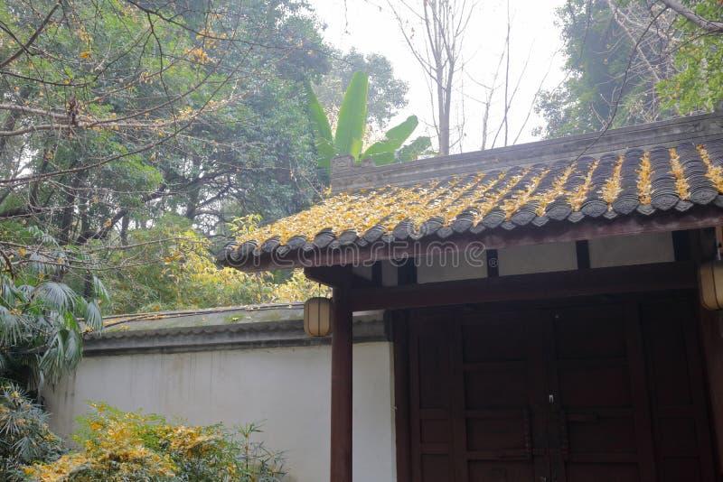 La puerta del estilo chino de Du Fu cubrió con paja el parque de la cabaña, adobe rgb imágenes de archivo libres de regalías