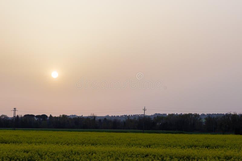 La puesta del sol con la arena suspendió en la atmósfera, coluring el rojo del cielo, sobre algunos campos cultivados con las flo imagenes de archivo
