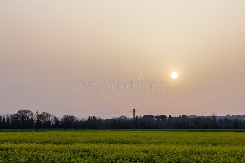 La puesta del sol con la arena suspendió en la atmósfera, coluring el rojo del cielo, sobre algunos campos cultivados con las flo foto de archivo