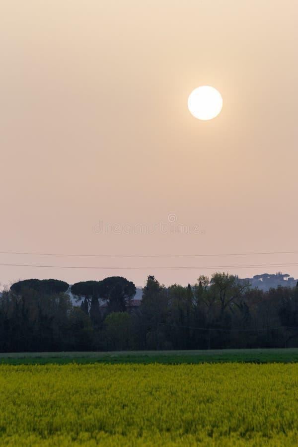 La puesta del sol con la arena suspendió en la atmósfera, coluring el rojo del cielo, sobre algunos campos cultivados con las flo fotos de archivo