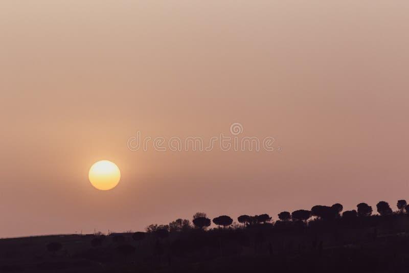La puesta del sol con la arena suspendió en la atmósfera, coluring el rojo del cielo, sobre siluetas de algunos árboles foto de archivo libre de regalías