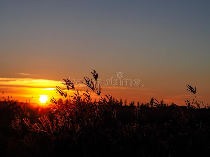 La puesta del sol el tiempo por la tarde cuándo desaparece o luz del día se descolora imagen de archivo