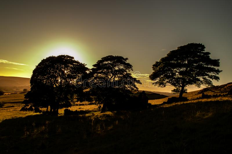 La puesta del sol enciende los árboles, el brezo, las rocas y el granero arruinado en el extremo de la cucaracha imagenes de archivo
