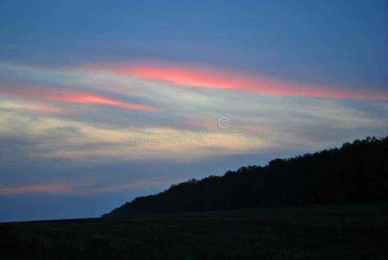 La puesta del sol hermosa, cielo púrpura-rosado, siluetas de los robles alinea a lo largo del prado, luz del sol imagen de archivo
