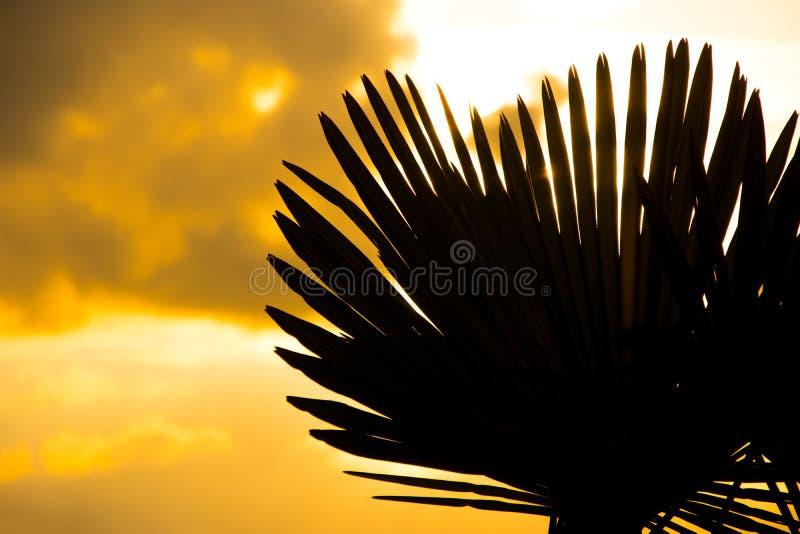 La puesta del sol maravillosa imagen de archivo