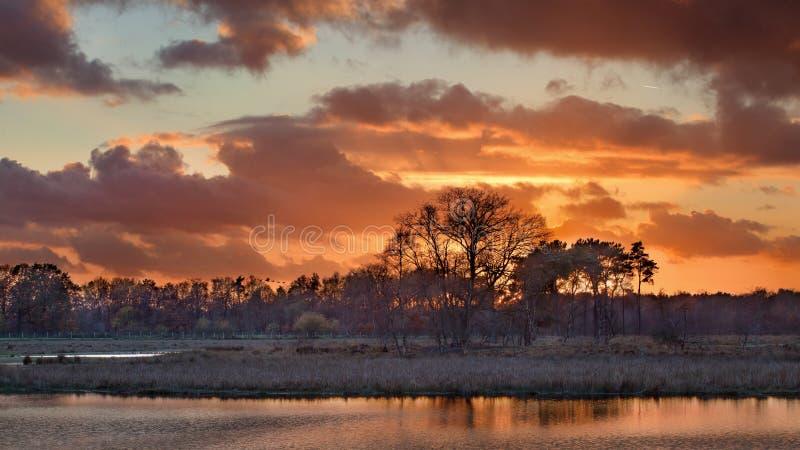 La puesta del sol roja y de color naranja reflejó en el agua en un humedal, Turnhout, Bélgica imágenes de archivo libres de regalías