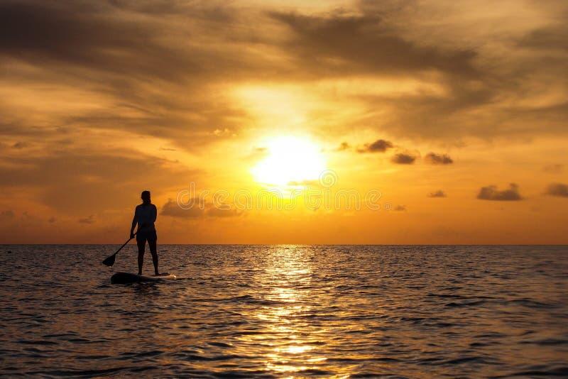 La puesta del sol se levanta la paleta imagen de archivo libre de regalías
