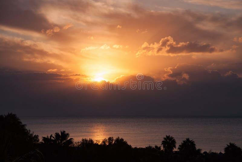La puesta del sol se nubla horizonte de la silueta de las palmeras imagen de archivo