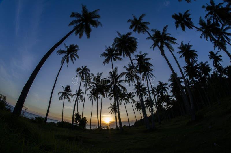 La puesta del sol tropical en toda la belleza imagenes de archivo