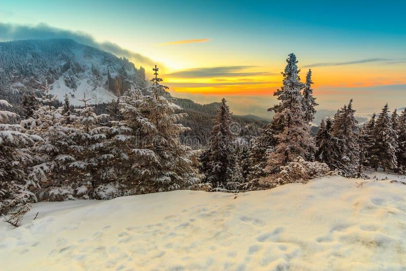 La puesta del sol y el invierno majestuosos ajardinan, Cárpatos, Rumania, Europa foto de archivo