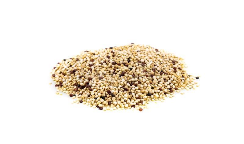 La quinoa semina l'alimento sano organico di Chenopodium quinoa fotografia stock libera da diritti