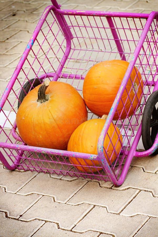 La récolte du potiron dans le chariot au marché photos libres de droits