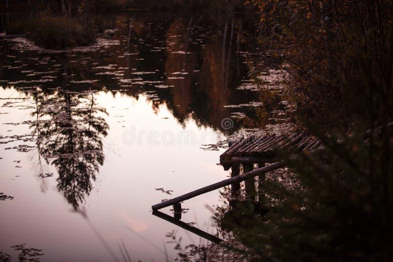 La réflexion du sapin dans le lac image stock