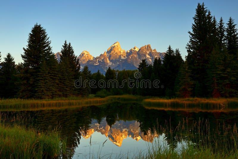 La réflexion grande de lever de soleil de Teton à l'atterrissage du ` s de Schwabacher en parc national grand de Teton image libre de droits