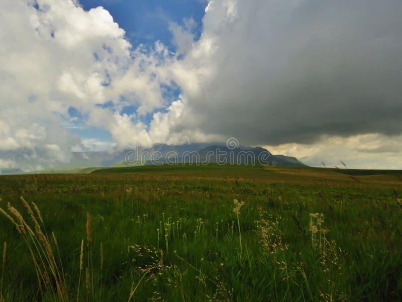 La région sauvage de Drakensberg photographie stock libre de droits