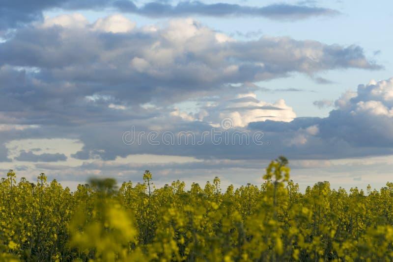 La rabina coloca con un cielo nublado en la puesta del sol fotos de archivo libres de regalías