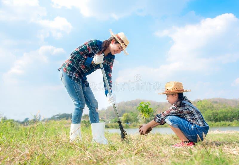La ragazza asiatica del bambino e della mamma pianta l'alberello che l'albero nella molla della natura per riduce la caratteristi fotografie stock
