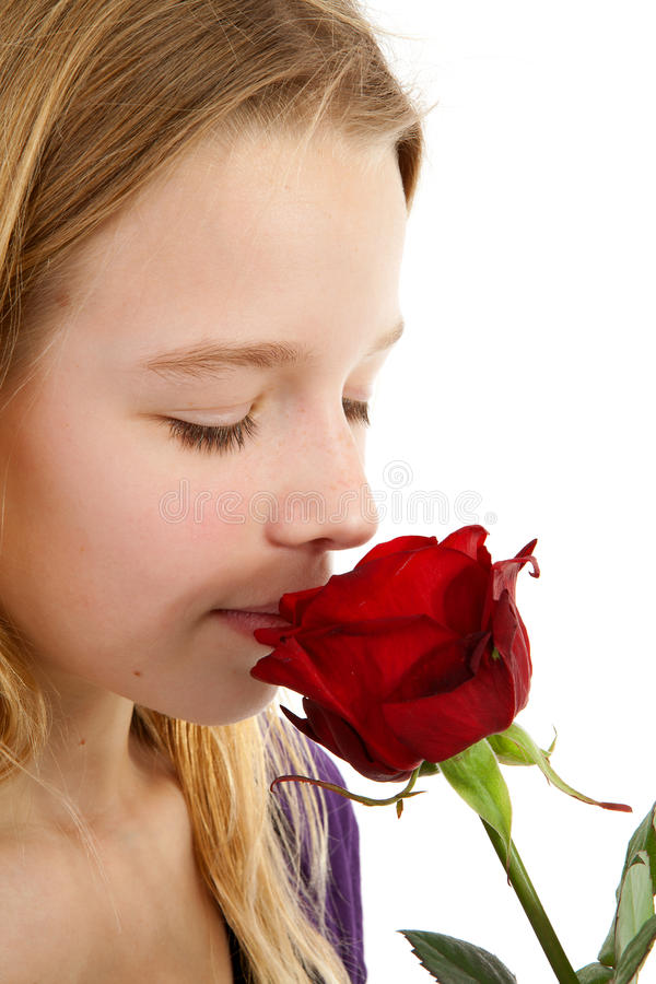 La ragazza che sente l'odore di un rosso è aumentato immagini stock libere da diritti