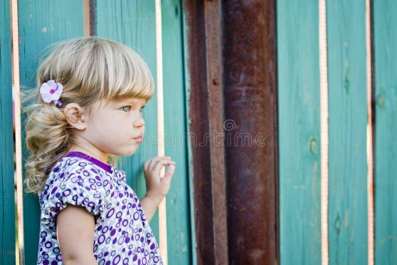 La ragazza contro un recinto del paese immagine stock