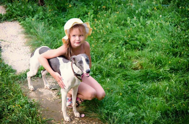 La ragazza dei bambini abbraccia il cane del terrier di piccolo levriero inglese sulla natura dell'estate fotografia stock