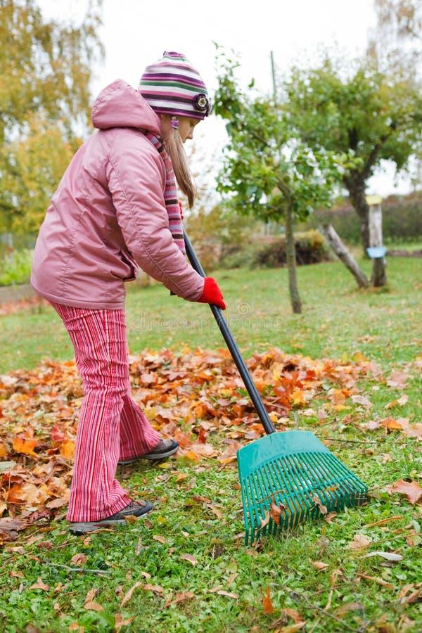 la ragazza del giardino di autunno lascia poco rastrello immagini stock libere da diritti