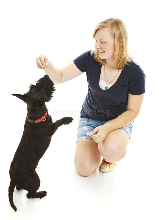 La ragazza ed il cane fanno trucchi fotografie stock libere da diritti