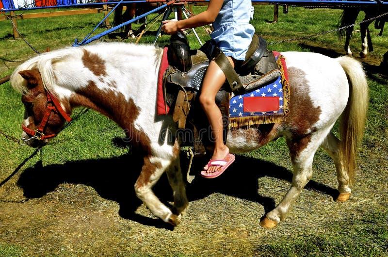 La ragazza guida un carosello del cavallino fotografie stock