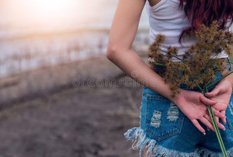 La ragazza negli shorts dei jeans ed il bianco conferiscono a tenere un fiore dell'erba selvatica immagini stock libere da diritti