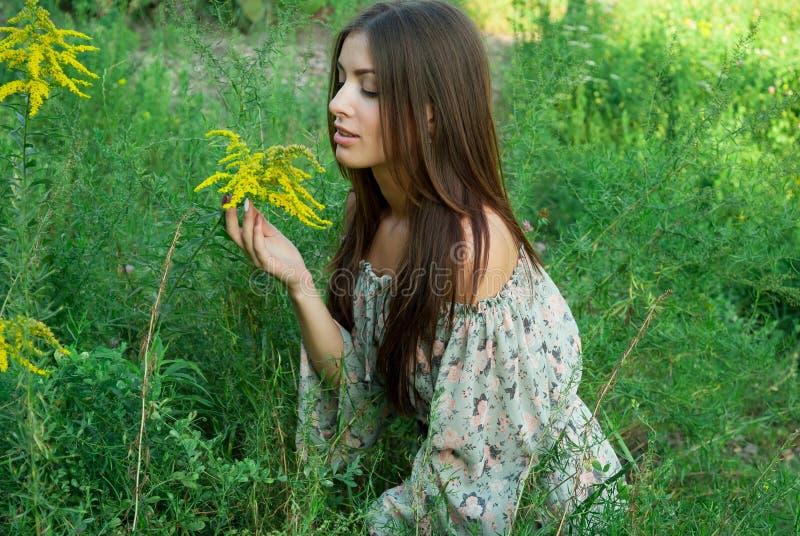 La ragazza piacevole inala l'aroma dei fiori selvaggi fotografia stock