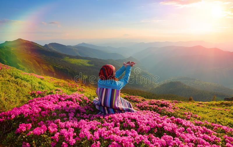 La ragazza in plaid a strisce sta sedendosi sul prato inglese fra i rododendri rosa che guarda ai paesaggi delle montagne fotografia stock libera da diritti
