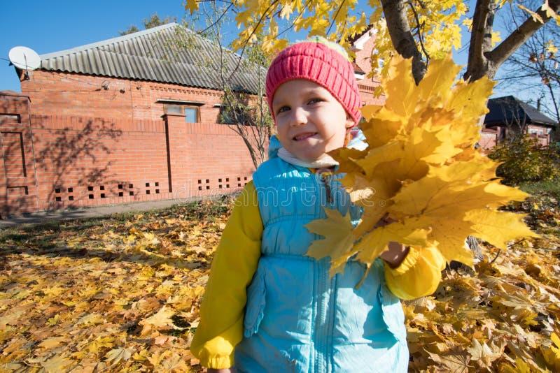 La ragazza raccoglie le foglie di autunno fotografie stock