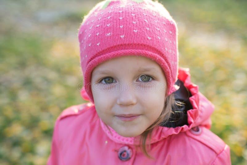 La ragazza raccoglie le foglie di autunno fotografie stock libere da diritti