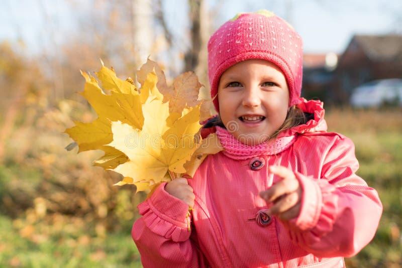 La ragazza raccoglie le foglie di autunno immagini stock libere da diritti
