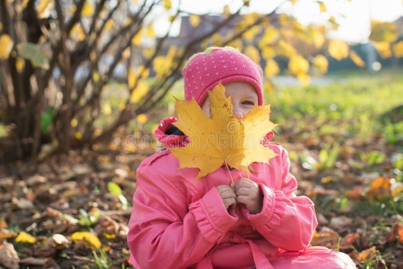 La ragazza raccoglie le foglie di autunno fotografia stock libera da diritti