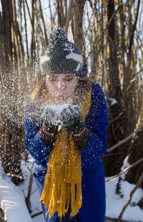 La ragazza scarica la neve dalle mani nella foresta che dell'inverno sta portando un cappotto porpora e un cappello grigio fotografia stock