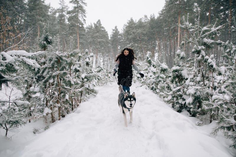 La ragazza si diverte con il cane in foresta nevosa immagini stock libere da diritti