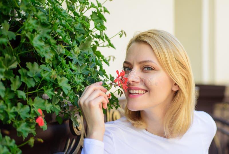 La ragazza si siede l'aroma dei fiori di annusata del caffè Il bello terrazzo attira i clienti Piante come decorazione naturale L immagine stock