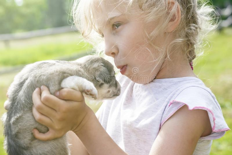La ragazza sta tenendo un cucciolo molto piccolo Luce del giorno Primo piano fotografia stock libera da diritti