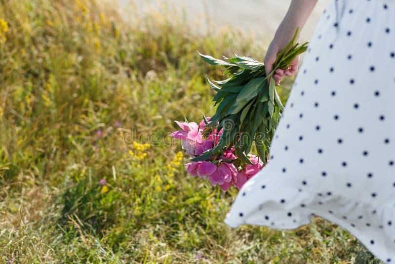 La ragazza sta tenendo un mazzo di belle peonie rosa di fioritura I suoi sbattimenti bianchi del vestito nel vento Bella vista di fotografie stock libere da diritti