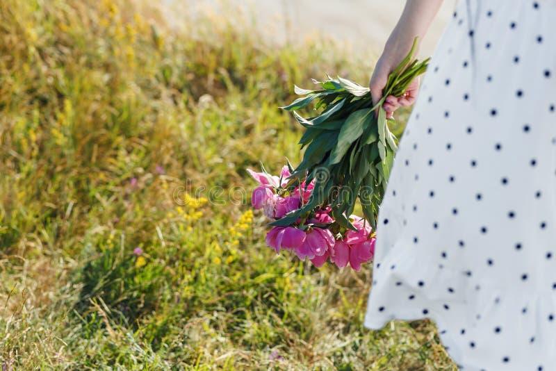 La ragazza sta tenendo un mazzo di belle peonie rosa di fioritura I suoi sbattimenti bianchi del vestito nel vento fotografia stock