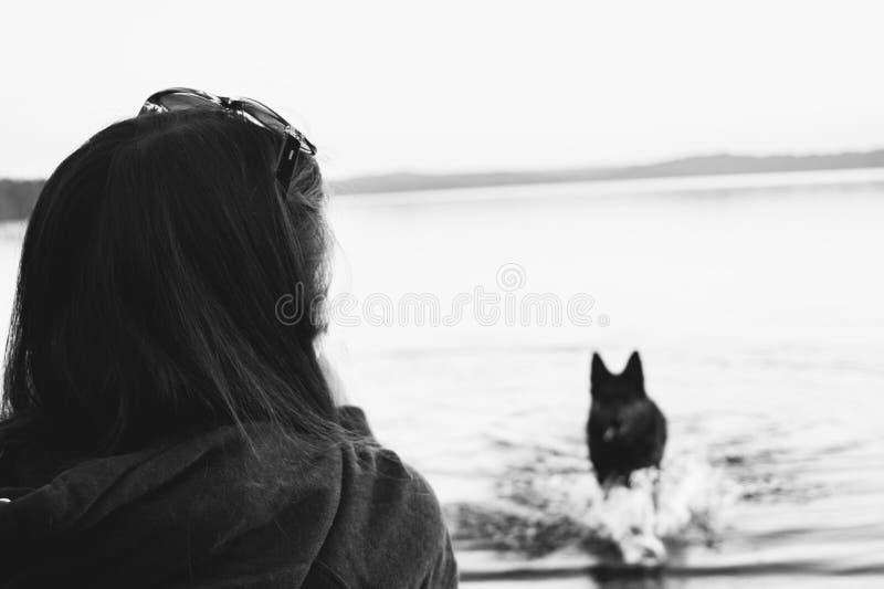 La ragazza sugli sguardi della spiaggia al cane fotografia stock