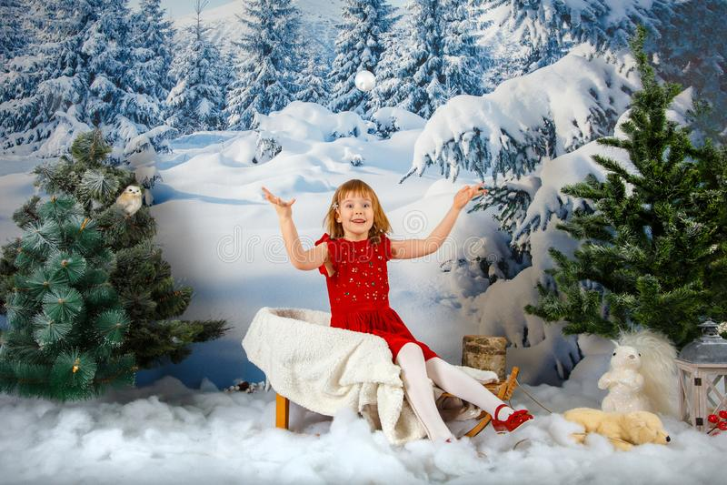 La ragazza sui precedenti della foresta di inverno immagini stock