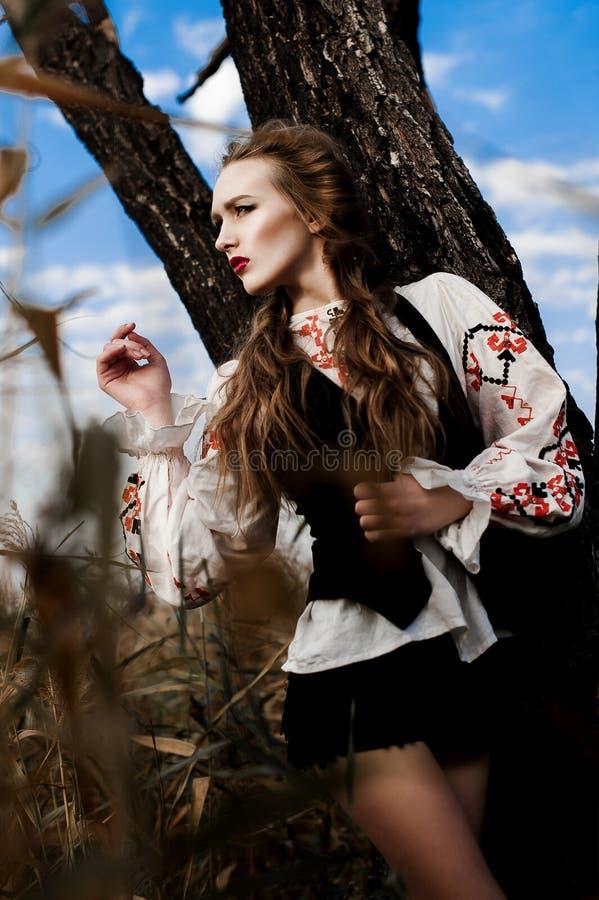 La ragazza sul campo dell'estate in Bielorussia nazionale copre, fas fotografia stock