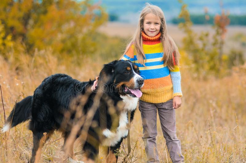 la ragazza sulla passeggiata con il suo amico a quattro zampe sull'autunno sistema Berner fotografie stock