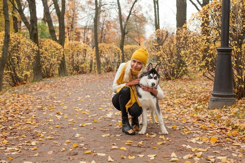 La ragazza sveglia ed il cane che camminano in autunno parcheggiano fotografia stock libera da diritti